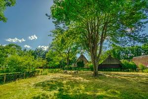 חיבור משקיעים לתיירות כפרית